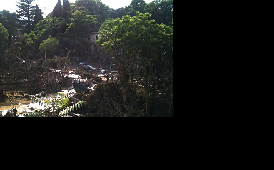 Tbilisi's zoo lies in ruins. (Photo: IWPR Georgia)