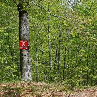 """A sign reading """"Mines - Watch Out!"""" in a Bosnian forest. 18 years after the war, Bosnian forests are still polluted with mines. Some 2,5% of the Bosnian territory still needs to be cleared of mines."""