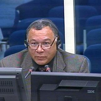 Stephan Joudry, defence witness in the Karadzic trial. (Photo: ICTY)