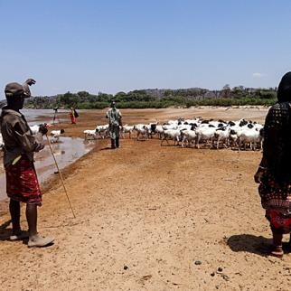 Local herdsman watch over as their goats drink from the river. (Photo: Robert Wanjala)