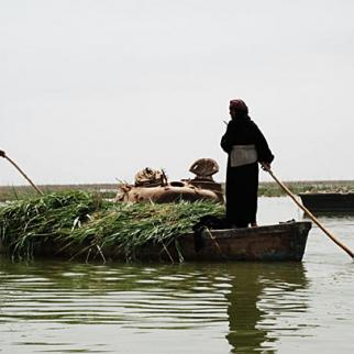 Ma'dan boatsmen guide their slender wooden boat past a submerged Iraqi army tank in the Hor Saleel marshland area in Iraq's southern Basra province. (Photo: Ali Abu Iraq)
